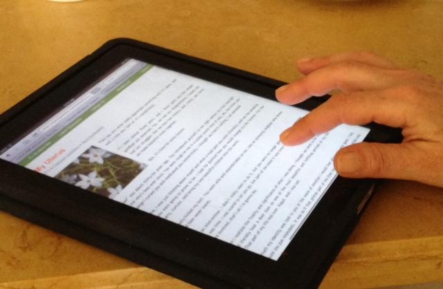 iPad CG
